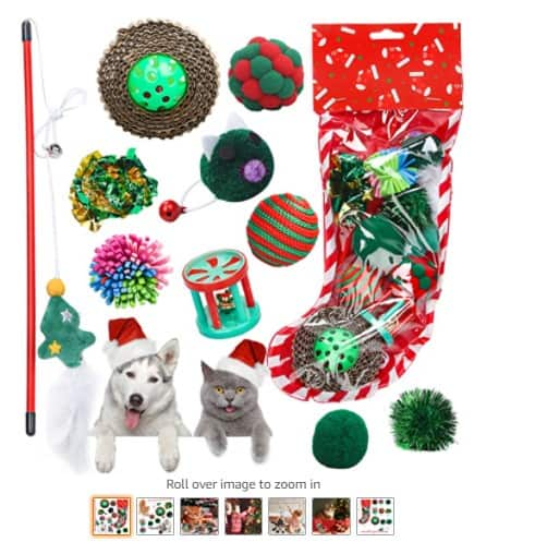 Christmas perfect gift example for pets