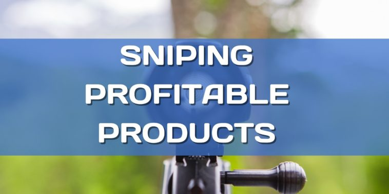 How to find profitable dropshipping products